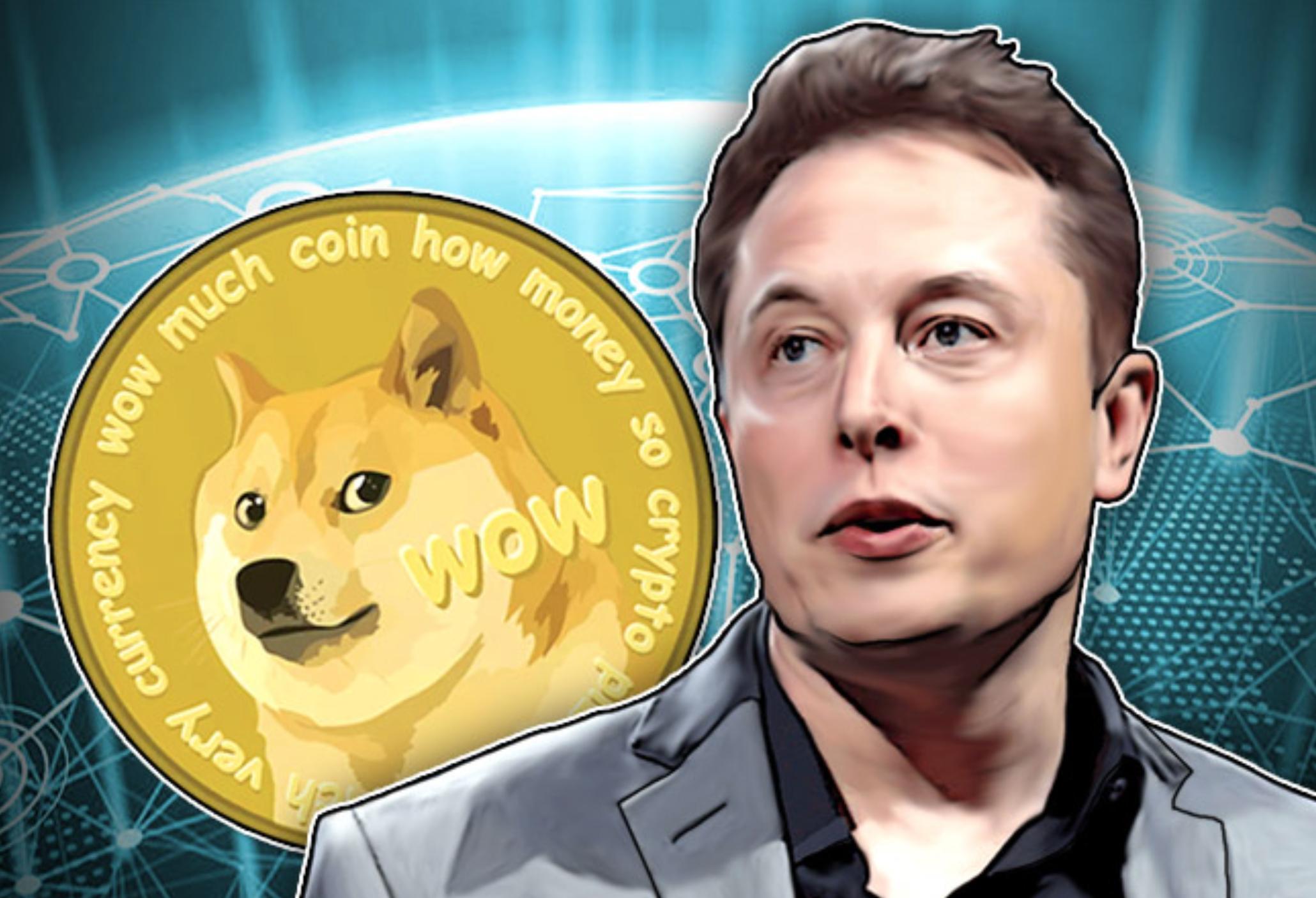 Dogecoin is pump and dump schema