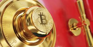 Crypto Treasuries report