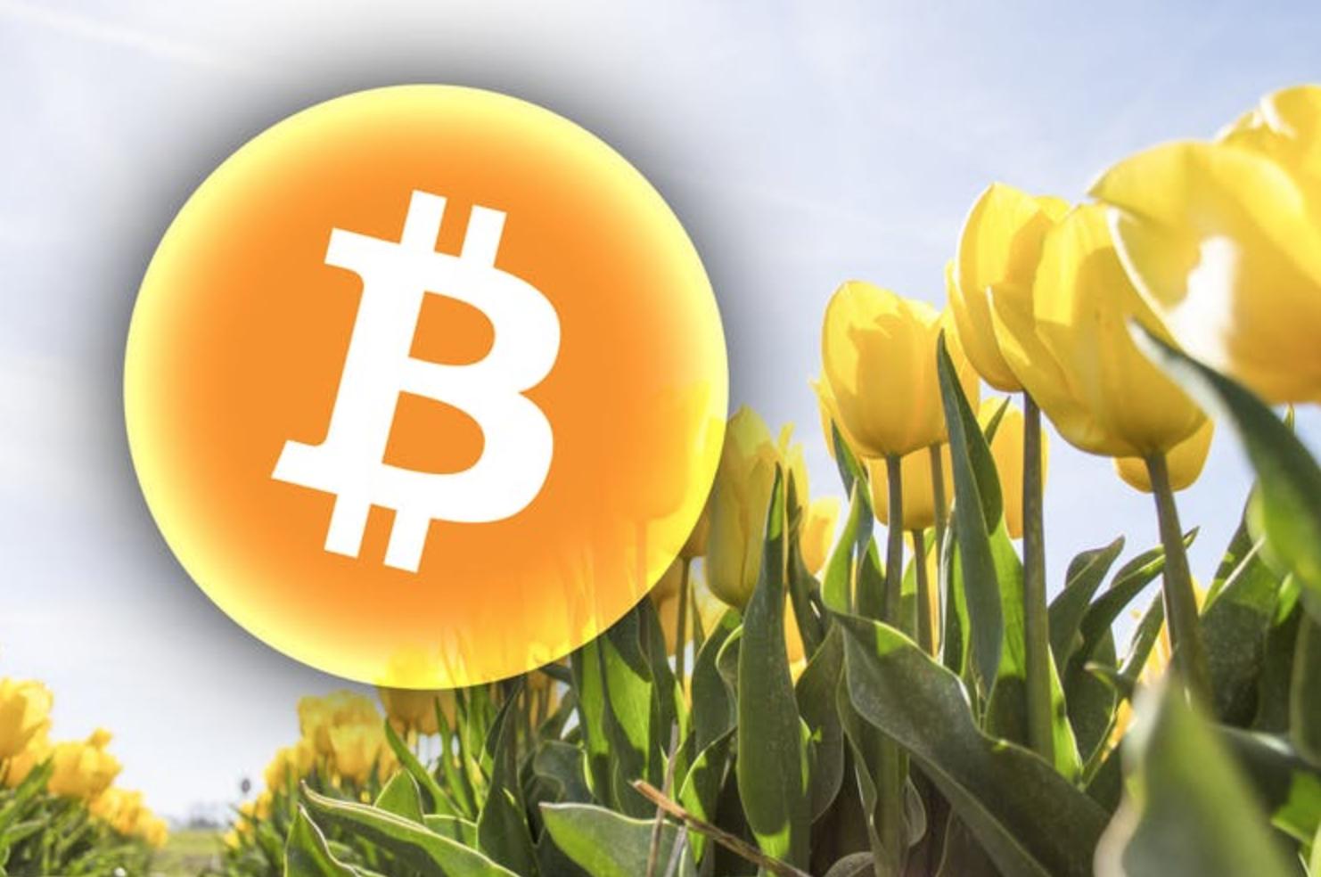 Bitcoin futures.